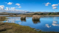 gregory_lake_narawntapu_national_park_tas_1