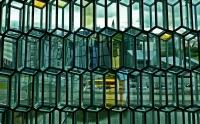 Max Perkins Reykjavik Vision
