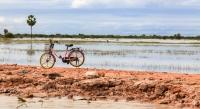 Phil Kerrigan  Lonesome Bicycle
