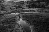 Steven Gilandas  Maroubra Rocks