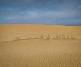Hans Lignell  Sand & Sky