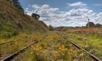 Lucie Loane  Carcoar Rail