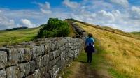 Max Perkins  Walking The Wall
