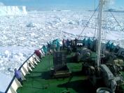 Yvonne Dodwel  In The Ice Ross Sea