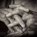 Greg Lake Old Hands Long story  Credit