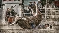 Kian Mak  Novice bull crush Merit