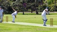 margaret_frankish_weekend_cricket