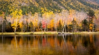 Crawford_Notch