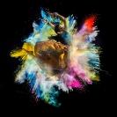 KBoytell_Dance_Explosion