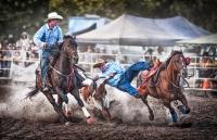 Les_Atkins_Ride'm_Cowboy_1.jpg