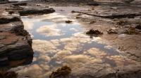 Fujiko_Watt_Cloud_Pool
