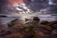 Credit_Glen_Parker_Bungan_Sunrise_1