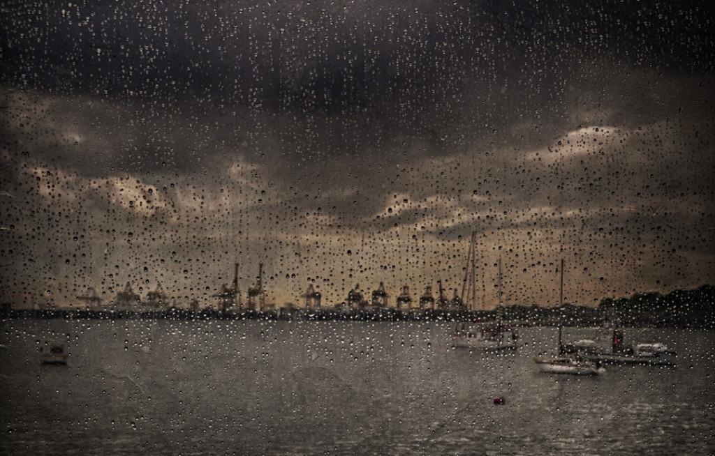 Projected Image of the Night, Joslyn Davis -Cranes