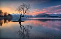 Glen Parker  Lone Tree Credit