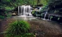 Glen Parker  Carlingford Waterfall