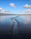 greg_lake_low_tide_tamar_river_1